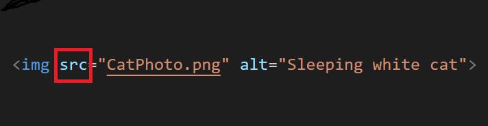 Image Code Example SRC Attribute